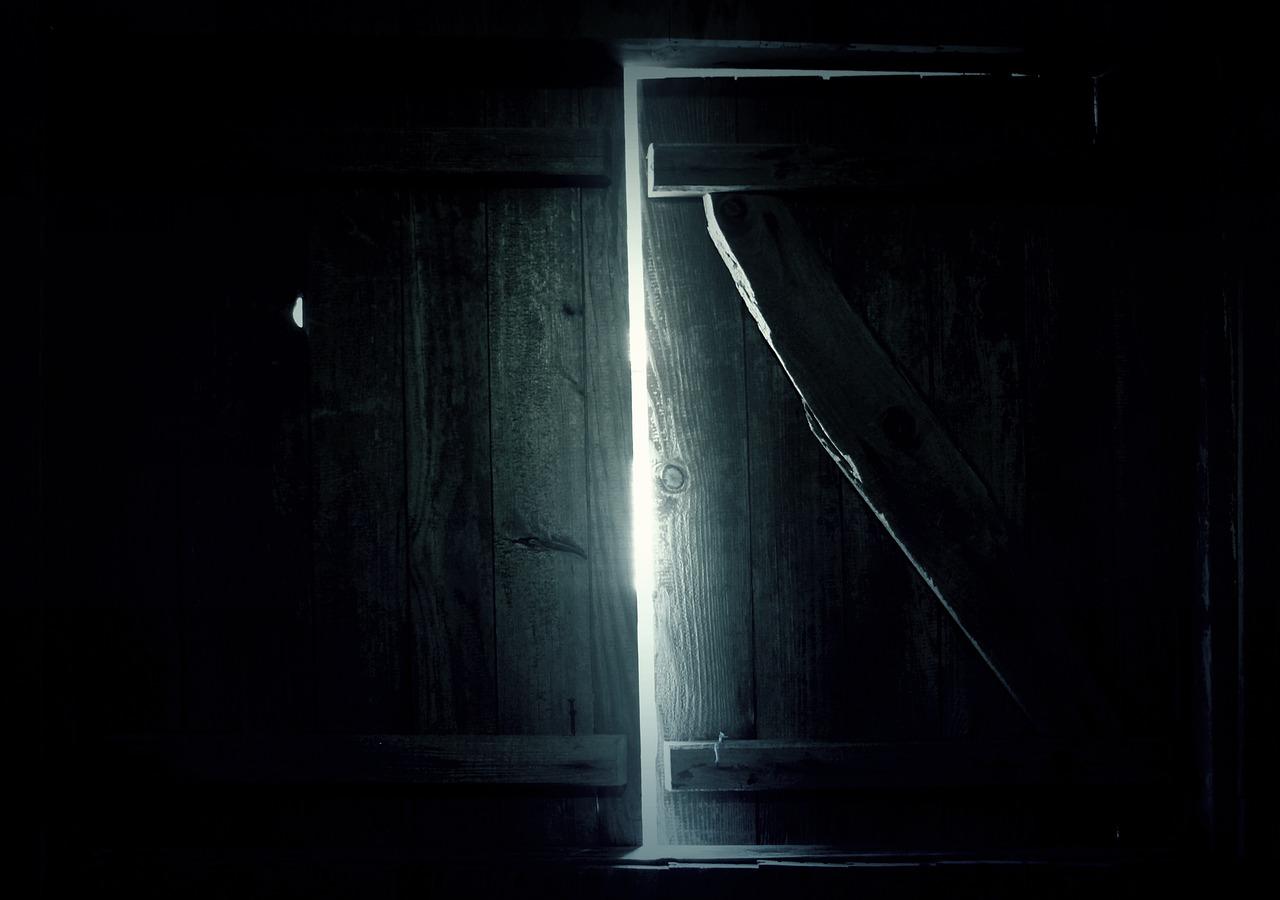 dveře vedoucí ven