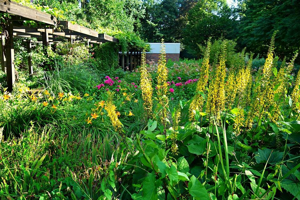 zahrada s pergolou
